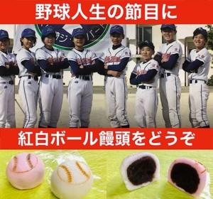 野球 卒団式 お菓子